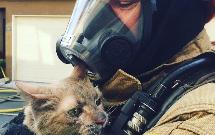 Meet the EVO Family: Jonah, Co-Founder, Firefighter, Realtor and more PLUS Bonus Fire Safety Tips